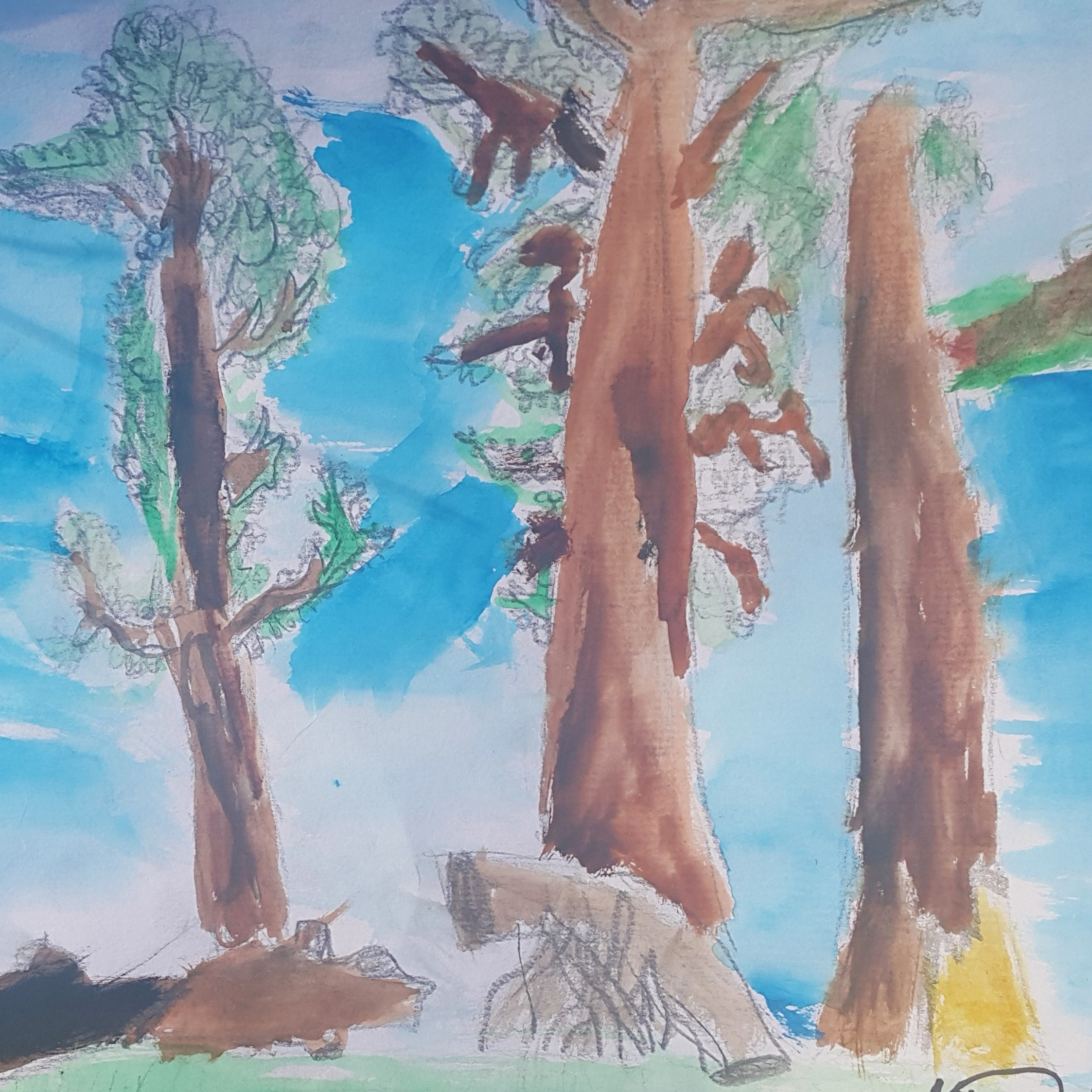 landscape-observation-year6-tree-private-lesson-tutor-irina-taneva